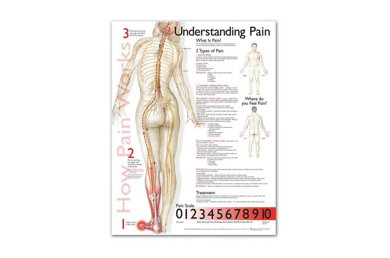 A fájdalom megértése 50,8x66cm