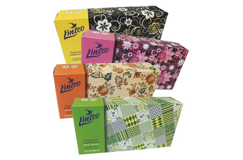 Zsebkendők – kozmetikus 2 rétegű/100 db
