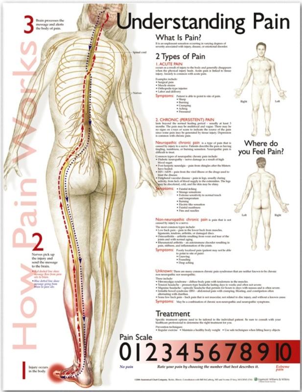 Porozumenie bolesti 50,8x66cm