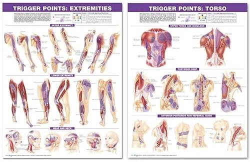 Plakátok sorozata - a test trigger kiváltási pontjai
