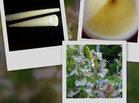 Telové sviečky muškátová-šalviová 5ks